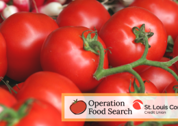 Operation Food Search with image of tomatoes on the vine